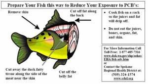 Die neue Art, Fisch zu essen ...