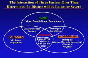 interaction 3 factors