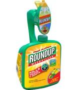 roundup-ready