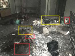 Odessa victims only shoulders and heads charred
