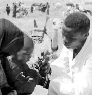 smallpox immun Africa