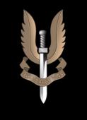 S.A.S emblem