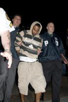 David Williams arrest
