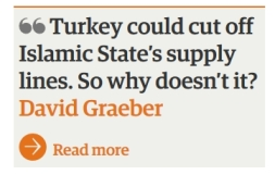 Turkey symb IS The Guardian