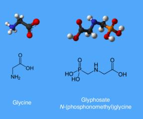 Glyphosate & Glycin