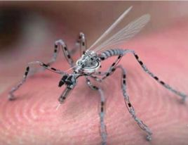 insect-drone poison Halper