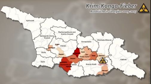 Crimea-Kongo-Fever Georgia 1