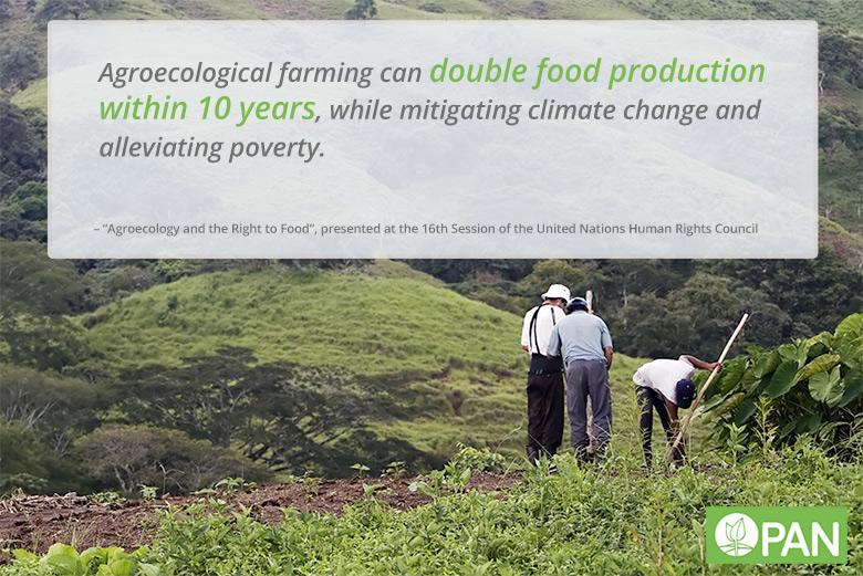 agroecology PAN