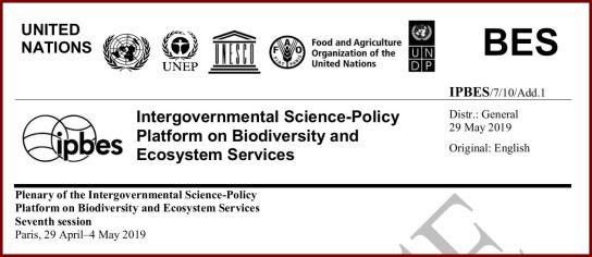 IPBES ecosystems 2019