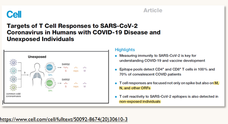 T-Cell Responses SARS-CoV-2